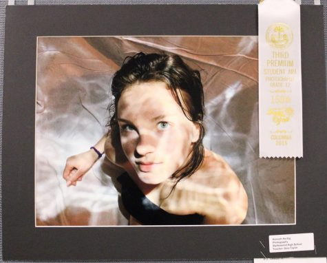 Blythewood students participate in SC State Fair art show