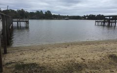 Lake Marion is below average levels for this time of year.