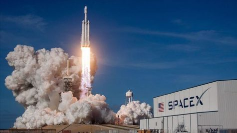 SpaceX rocket launches from Florida to study tissue chips